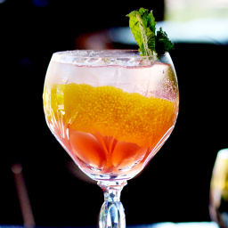 Rhubarb Tonic